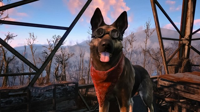 Dogmeat mod in Fallout 4 lets you explore the game through his eyes